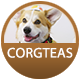 Corgteas badge