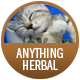 Anything Herbal / Decaffeinated badge